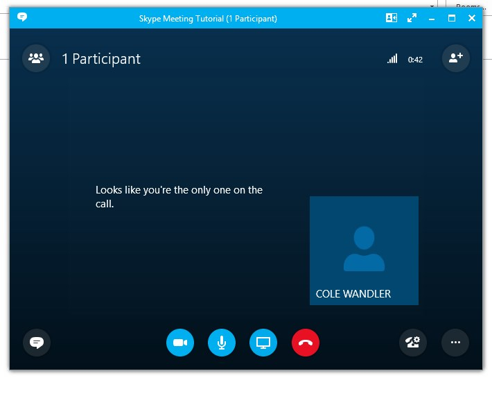 SkypeWindow.jpg